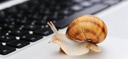 internet-lento-reclamo-disservizio
