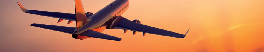 modelli moduli reclamo disagi aerei