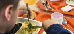 Fasce di reddito ISEE per mensa scolastica